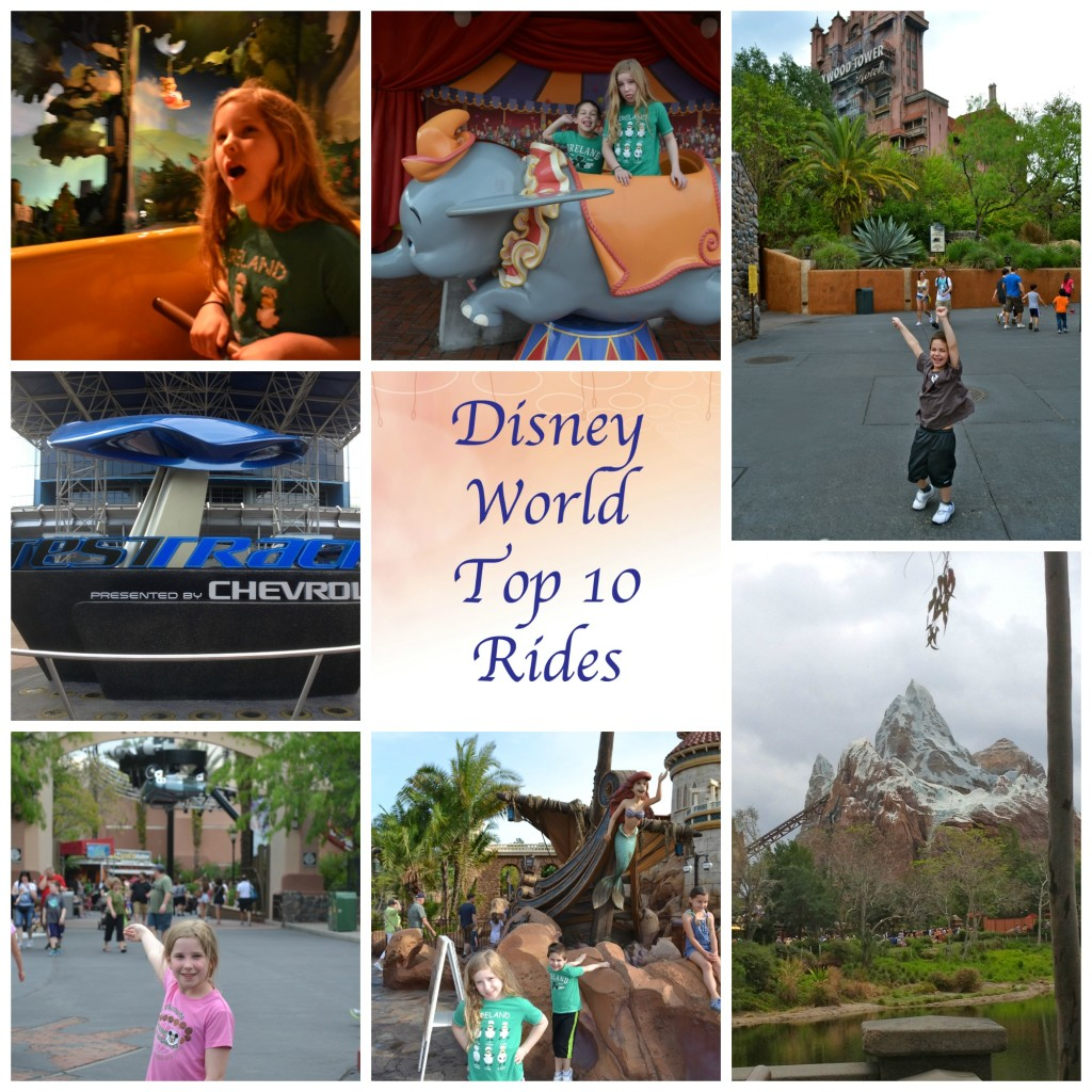 Disney World Top 10 Rides from Mama Luvs Books