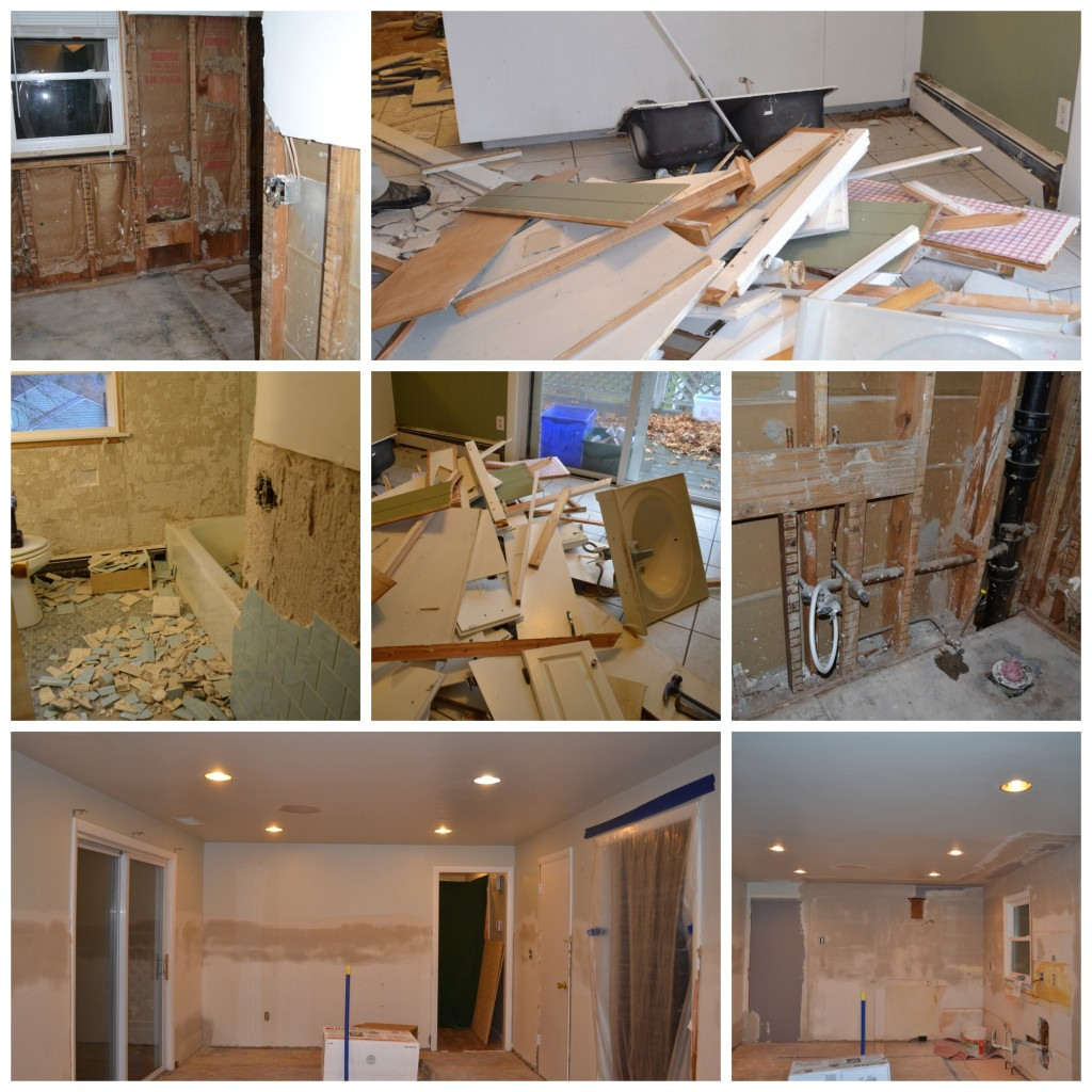 Renovation Demo and Progress