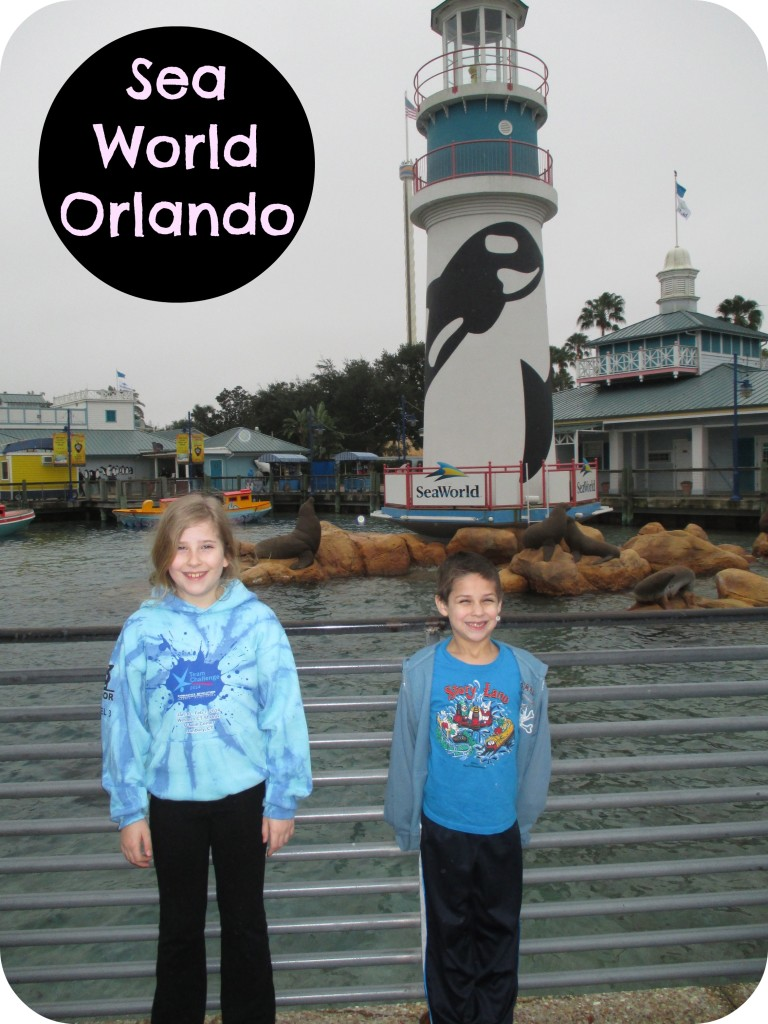 Sea-World-Orlando