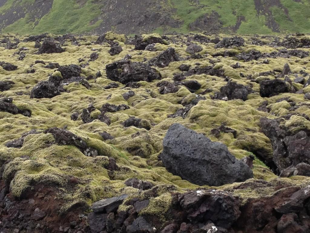 Reykjavík_Iceland_Lava_Fields
