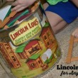 Lincoln Logs for Any Age