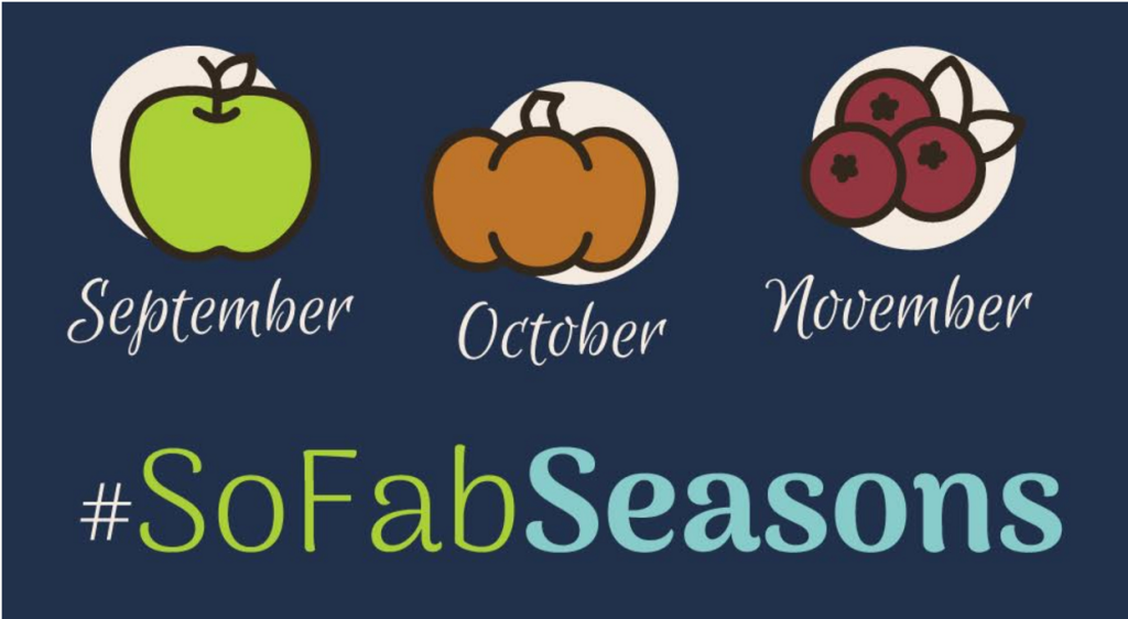 67 of the season's best apple recipes, crafts, activities and more! #SoFabSeasons